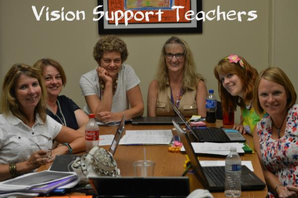 Vision Support Teachers